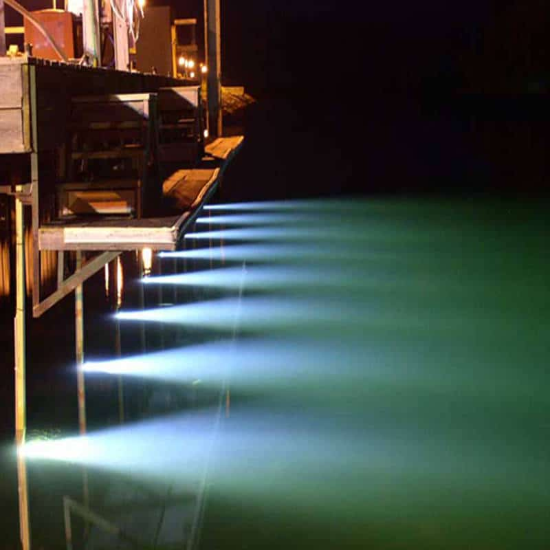 Hurley Dock Lights